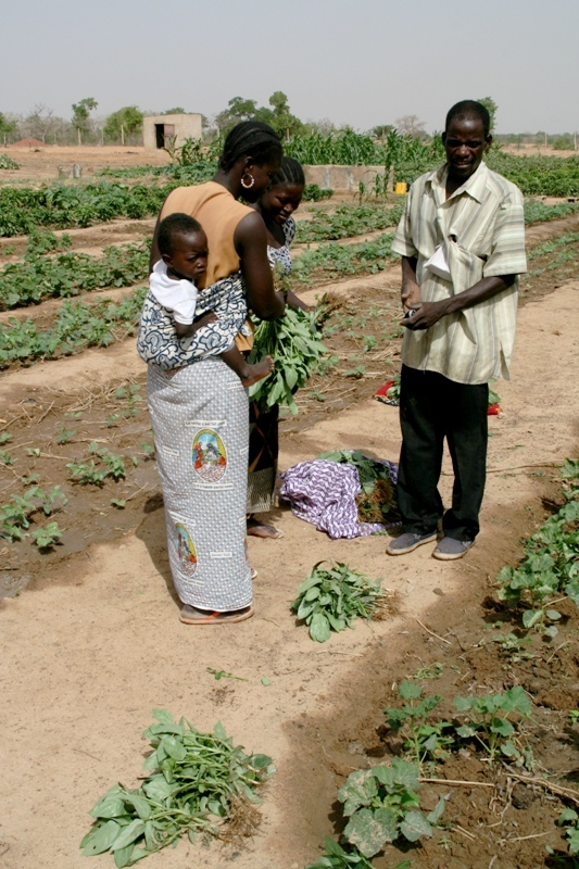 female-traders-buy-vegetables-from-community-gardener