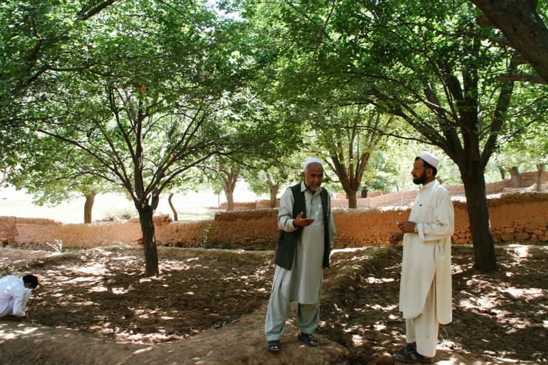 discussing-almond-production-in-kaymard