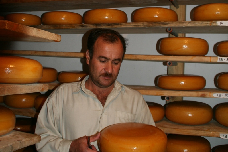 gouda-cheese-storage-2