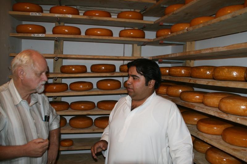 gouda-cheese-storage