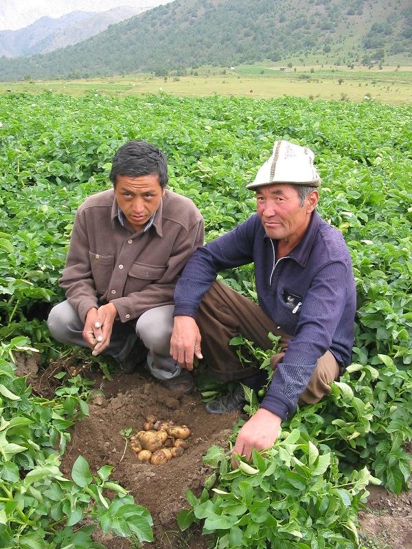a-farmer-inspecting-a-collegues-field