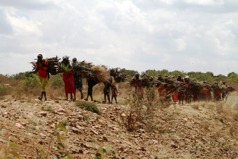 samburu-women-coming-home-with-firewood